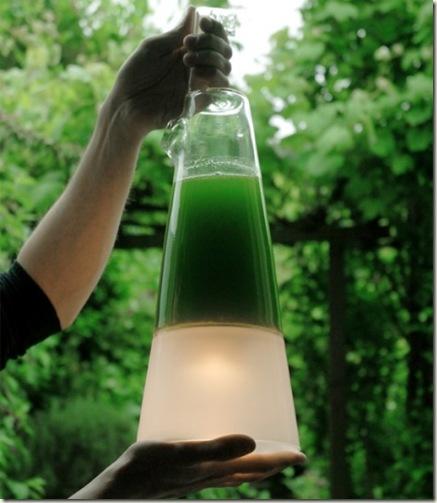 latro11 Latro: Lámpara de Algas que produce electricidad por la fotosíntesis