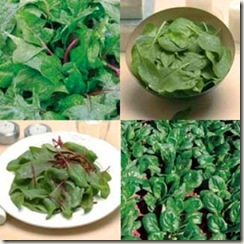 verdurasdehojaverde 10 alimentos que deberíamos consumir ecológicos