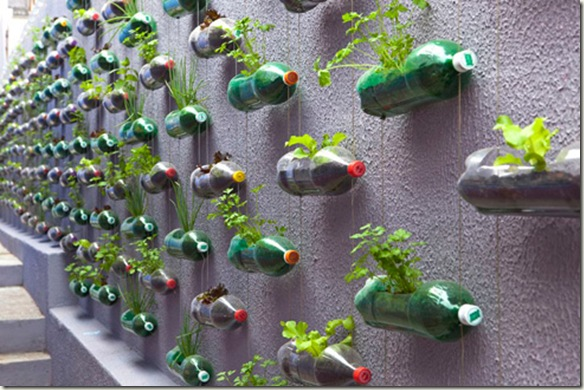 LDL4821 Crea un jardín vertical con botellas de PET