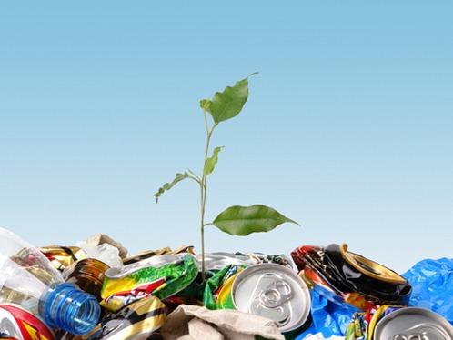 Frase sobre reciclaje