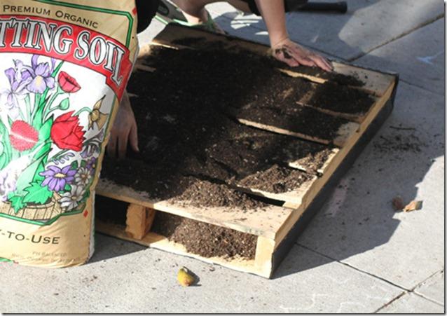 pallet garden step cmo hacer un jardn vertical con un palet