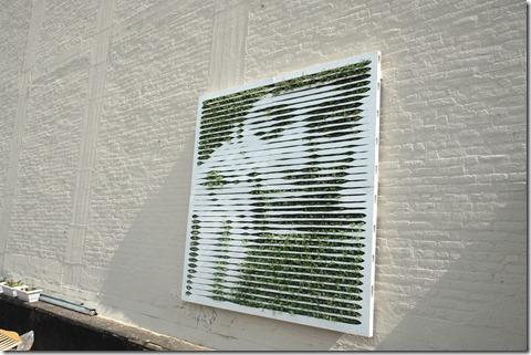 retrato verde El nuevo arte urbano se vuelve verde