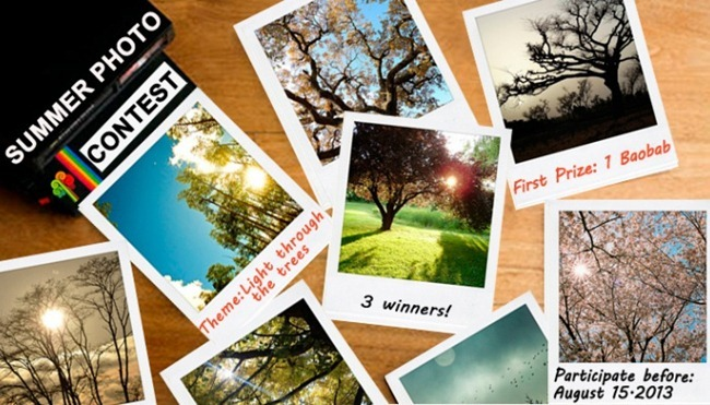 concurso-fotografia-tree-nation