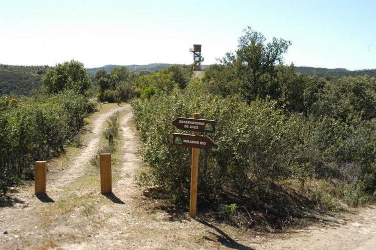 Ruta_de_las_Viñas
