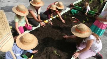 huertos-ecologicos-mamaterra