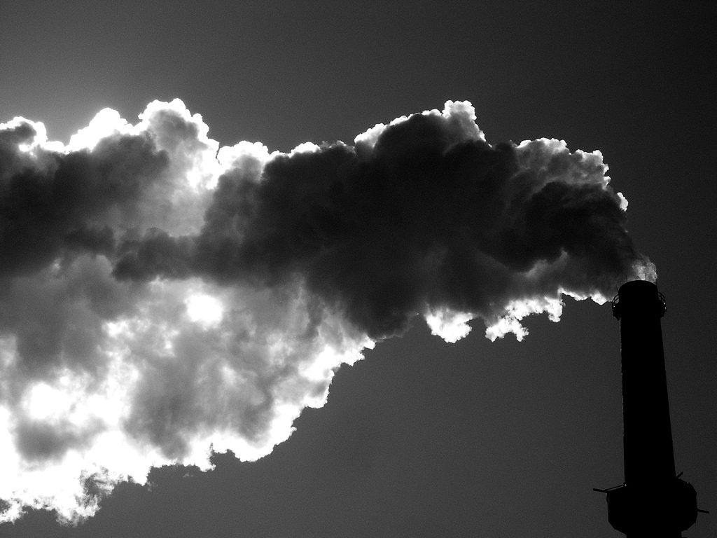 Reducir las emisiones es un gran paso en la lucha contra el cambio climático. Imagen: Señor Codo