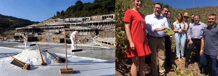 La uva pasa de Málaga y la sal de Añana reconocidos por la FAO