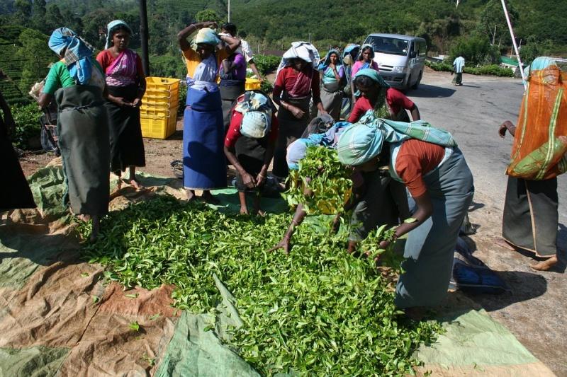 Día Internacional de las Mujeres Rurales 2019