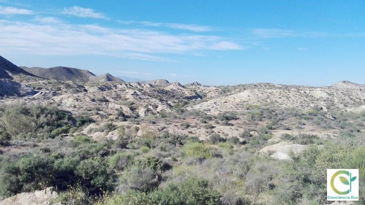 Paraje natural Desierto de Tabernas, Almería